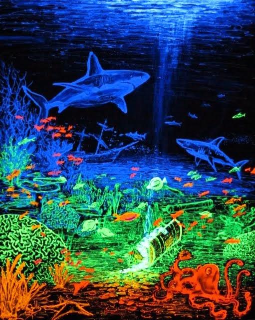 """Rainbow Reef"""
