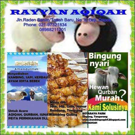 Rayyan Aqiqah