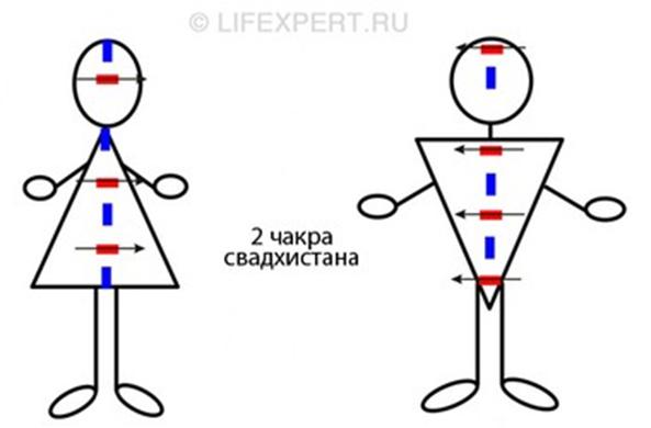 novinki-seksualnogo-belya