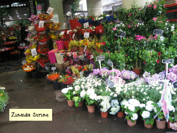 paris-florarii-cu-marfa-pe-trotuar