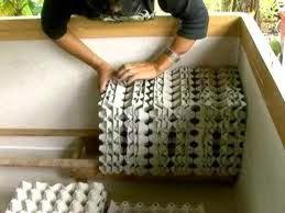 แผงไข่กระดาษ รังจิ้งหรีด ราคาถูก