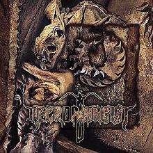 Lyrics Intestinal Incubation Necrophagist | Lirik Necrophagist Intestinal Incubation