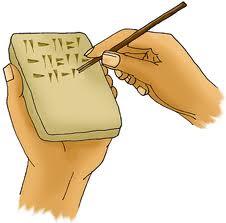 Cuña=cuneiforme