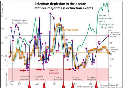 La concentrazione di Selenio negli oceani negli ultimi 550 milioni di anni