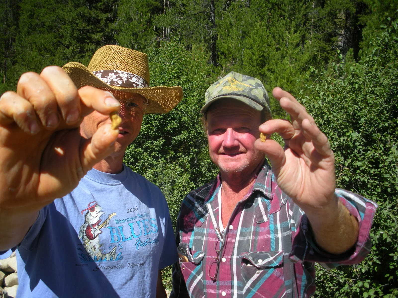 A couple of nice Montana gold nuggets