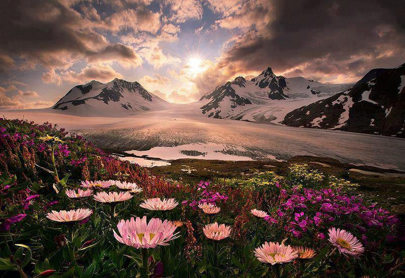 Alaska-United States-picture