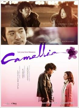 Hoa Sơn Trà|| Love For Sale | Camellia