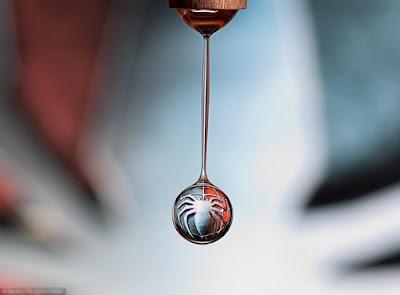 Imagenes en una gota de agua - logo Spiderman
