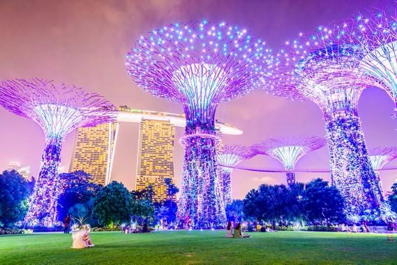 新加坡-滨海湾花园