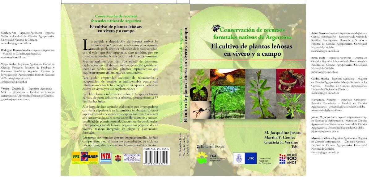 Programa sustentabilidad ambiental presentaci n de for Libro viveros forestales