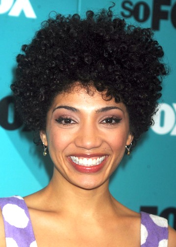 Black Haircuts: Black short African American Hairstyles Pictures ...