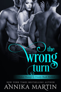 Review: The Wrong Turn by Annika Martin