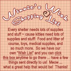 Winnie's Shopping List