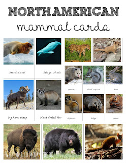 Free printables: North American Animals 3 part cards by Welcome to Mommyhood #freeprintables, #preschool, #montessoriactivities