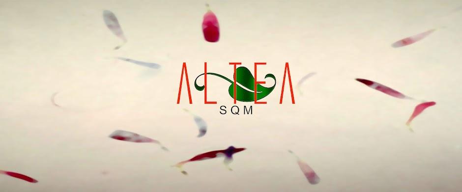 ALTEA-SQM síndrome sensibilidad quimica multiple