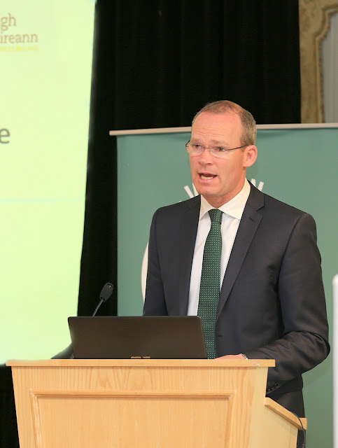 Irish Minister for Defence Simon Coveney