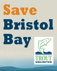 Save Bristol Bay