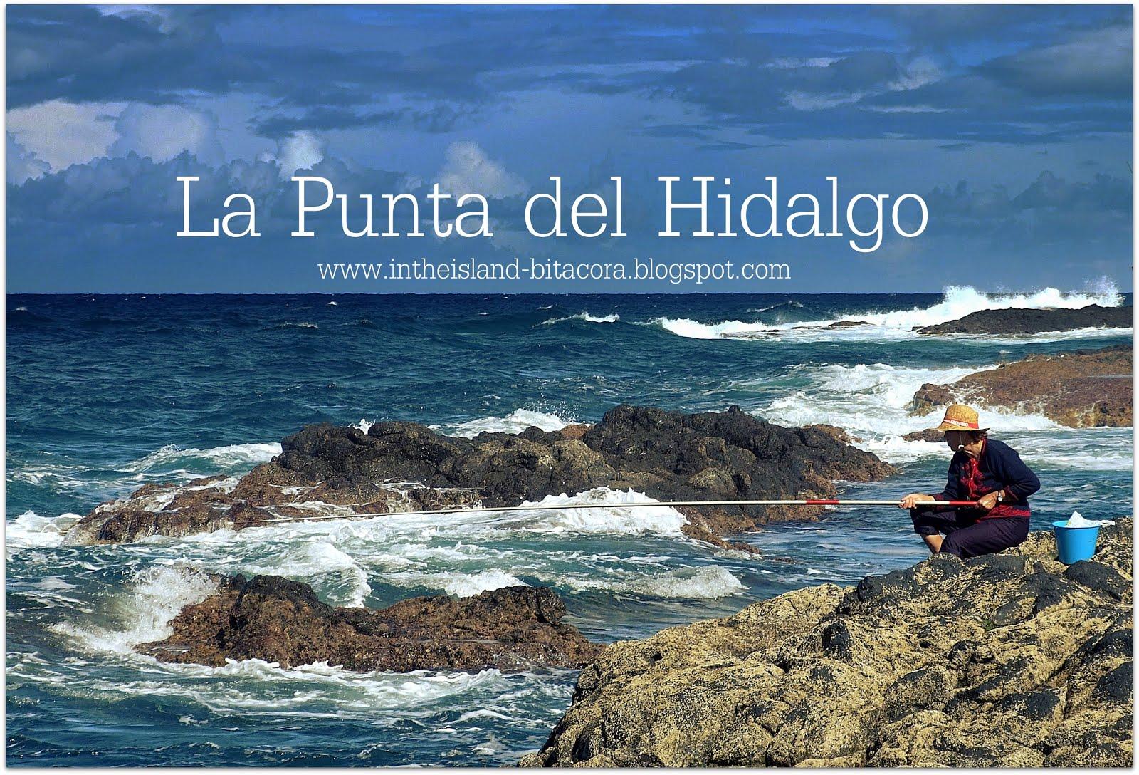 Punta del Hidalgo - Galeria de Imagenes