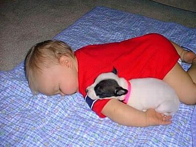 Nenê e filhote de cachorro dormindo juntos.