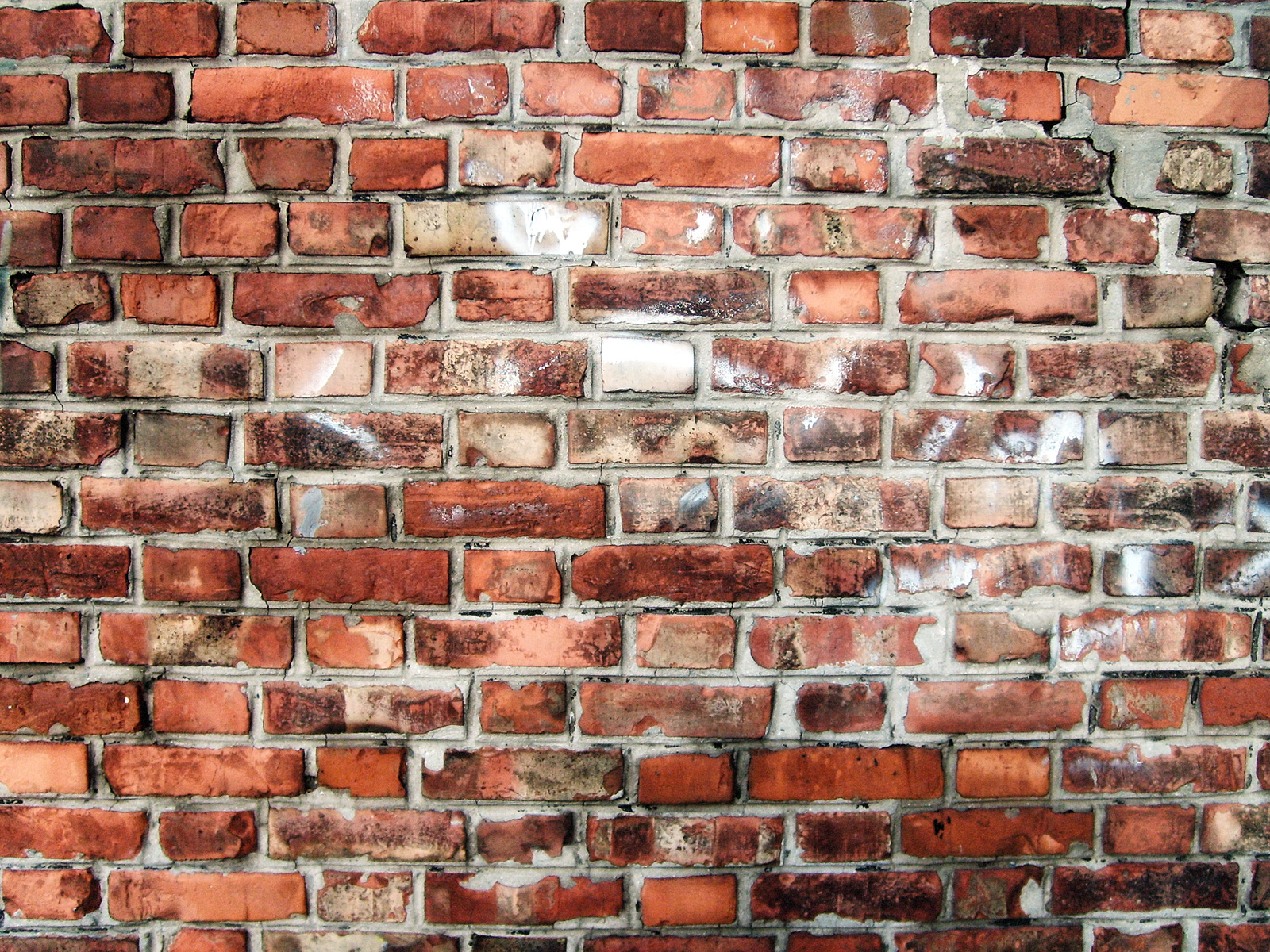 Christine Bailey Brick Wallpaper Hd