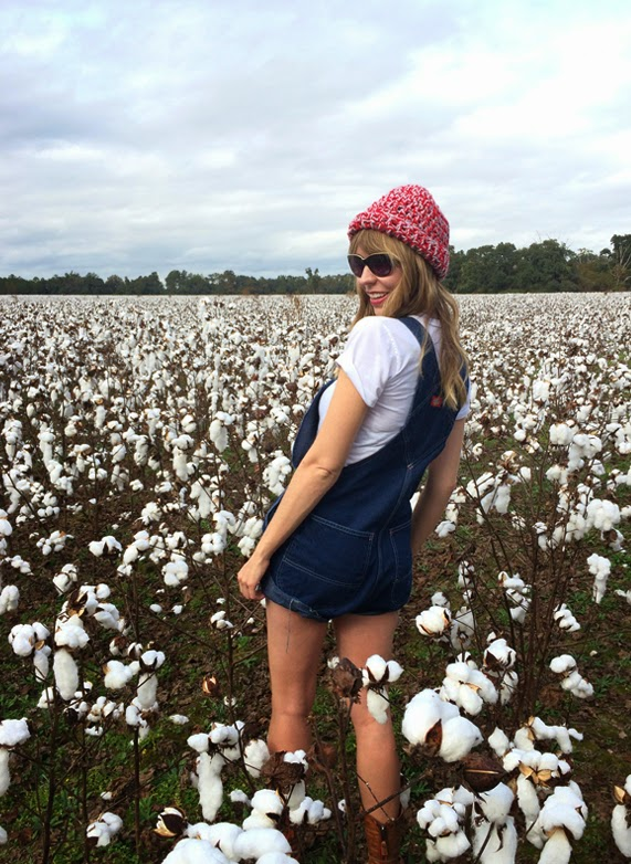 cotton, denim, alabama, cottonfield, fashion, overalls, simple, downhome
