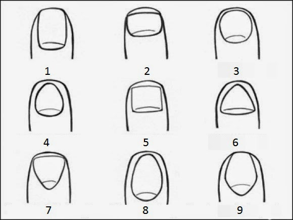 What does your nail shape tells about you? Personality Test