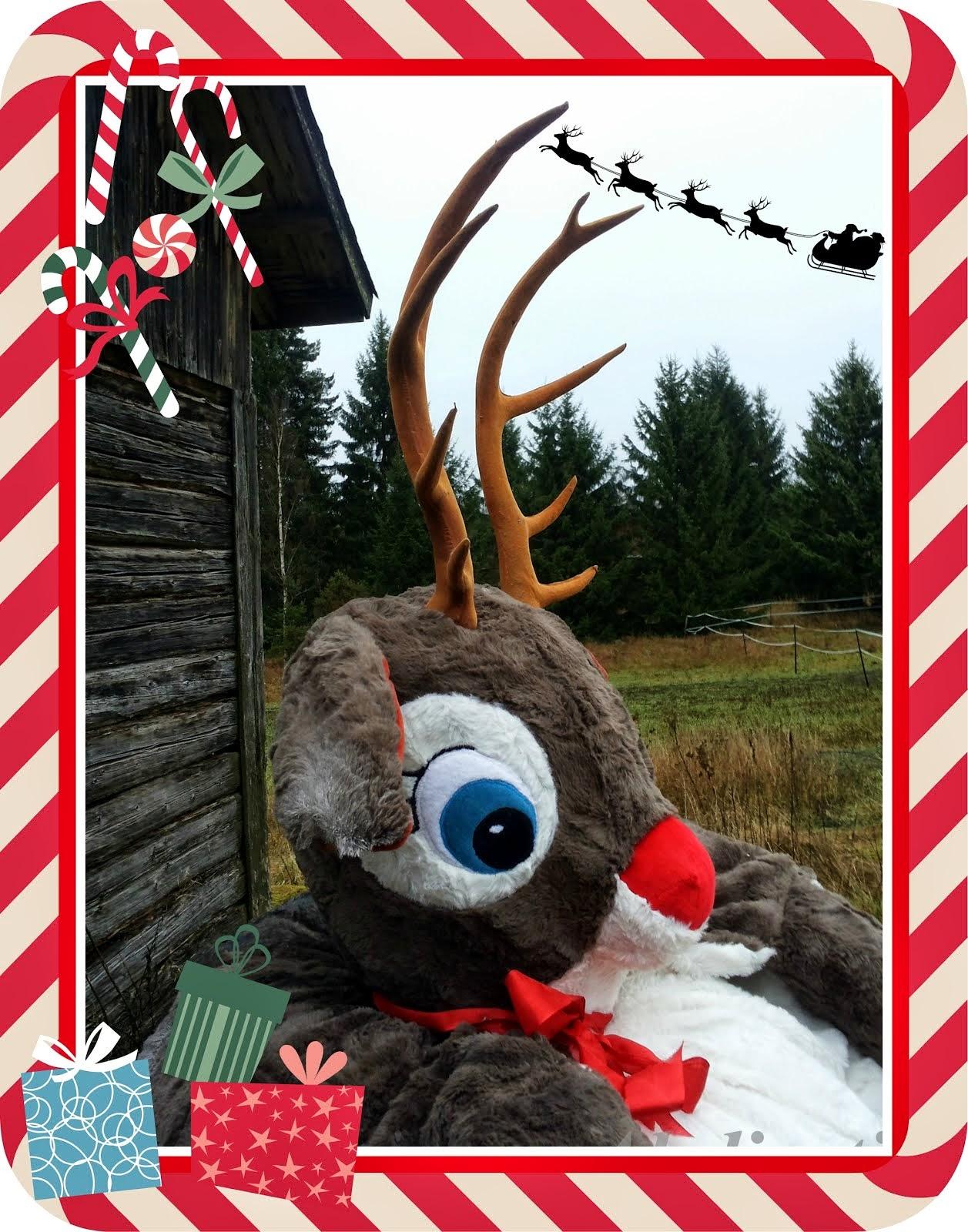 Petteri Punakuonon jouluseikkailu