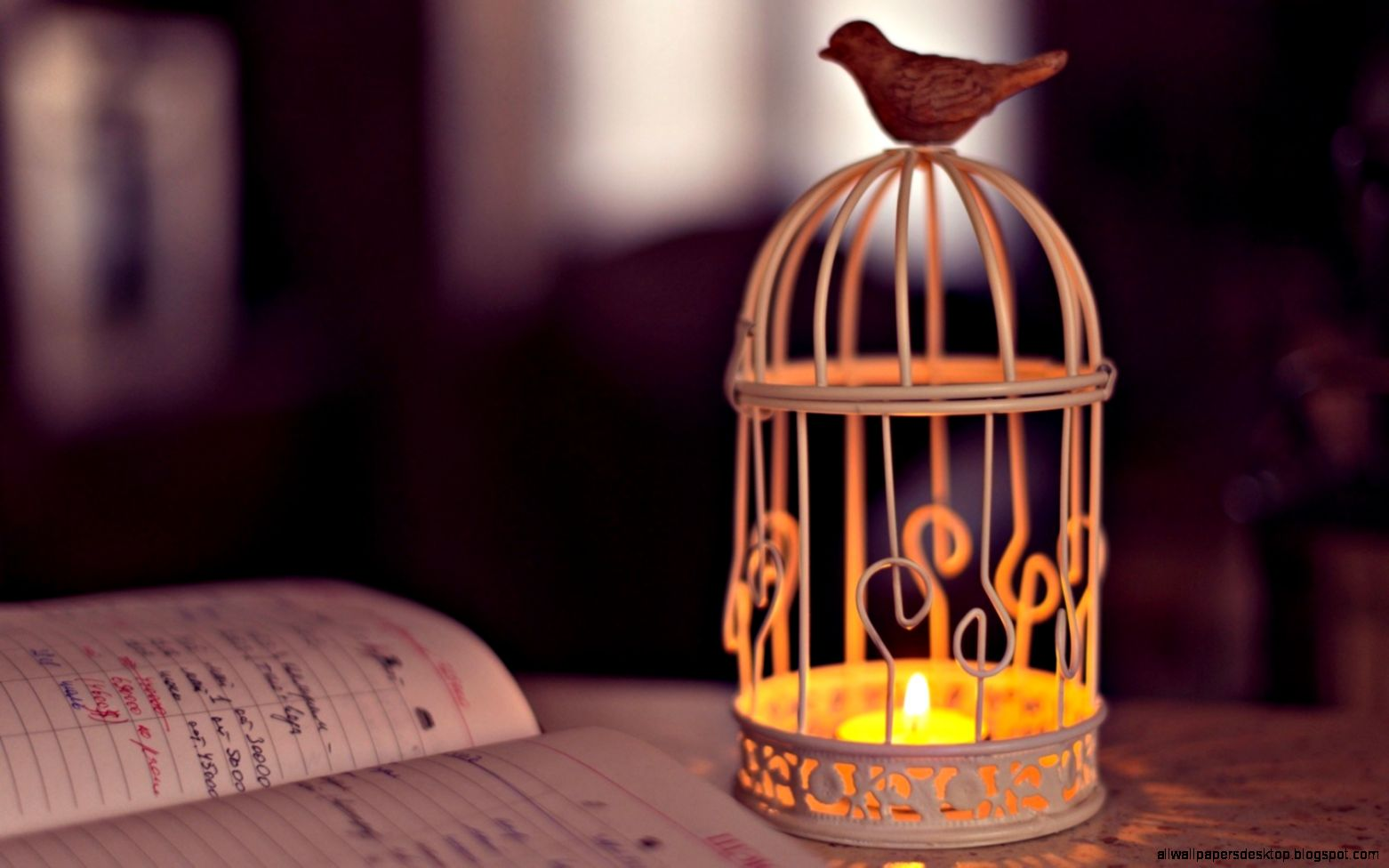 lantern candle hd wallpaper | all wallpapers desktop