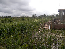 Plots & Acres of Land for sale at Kajola Ibeju Lekki