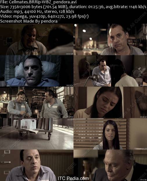Cellmates 2011 BDRip XviD - WiDE