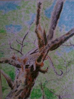 Onça na árvore (desenho)