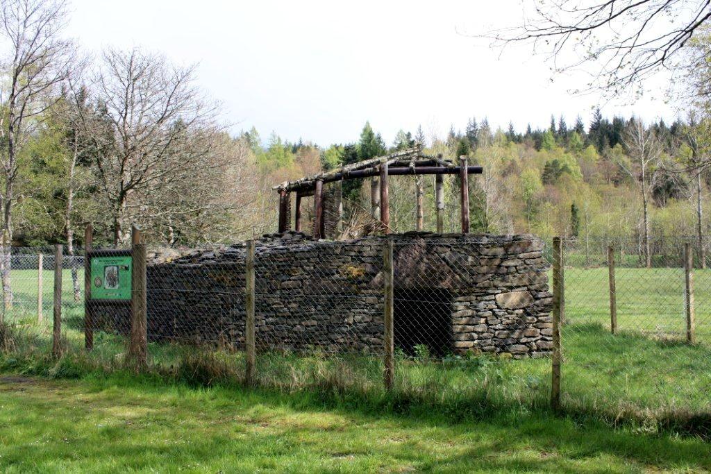 scotland dating partnership