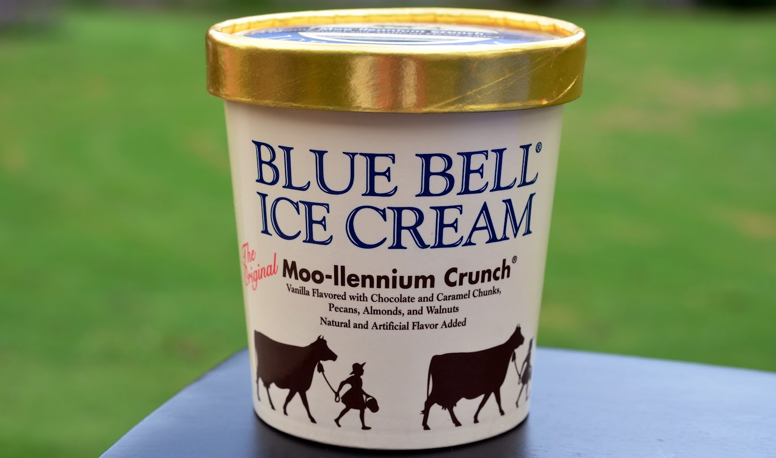 food and ice cream recipes REVIEW Blue Bell Moollennium Crunch
