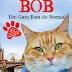 Resenha- Bob- Um gato fora do normal - James Bowen