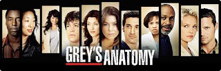 Grey's Anatomy S09E22 - 9x22 Legendado
