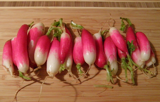 Row of Radishes on Cutting Board