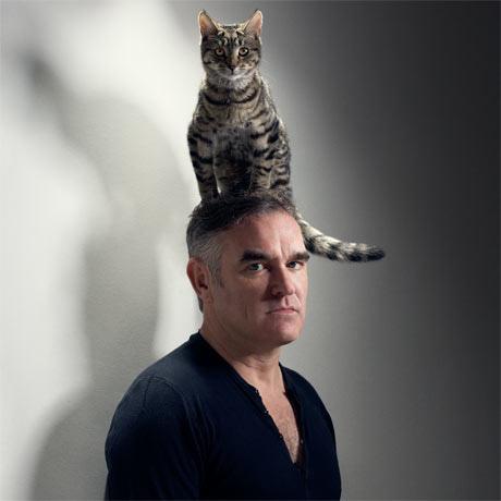 men holding cats, men wearing cats
