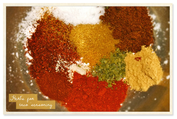 Preserved and Pickled: HOMEMADE TACO SEASONING