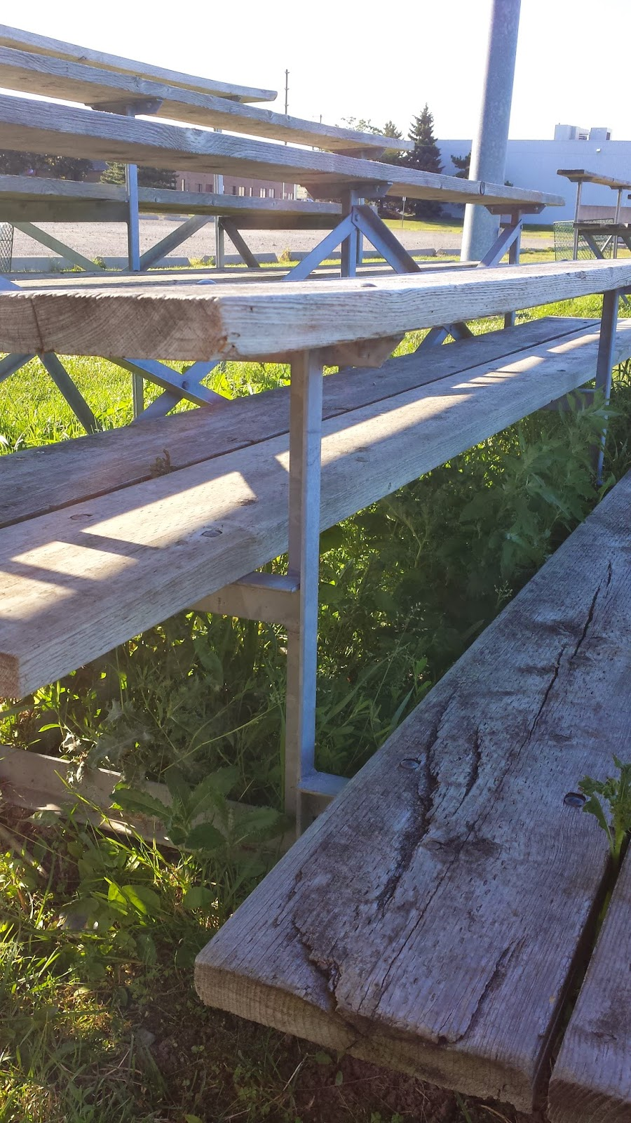Grass and weeds growing beneath wooden and metal bleachers.
