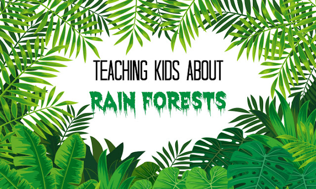 Rainforesr unit study resources for kids age 4-10