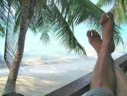 Despertarse en la playa con todas las materias aprobadas.