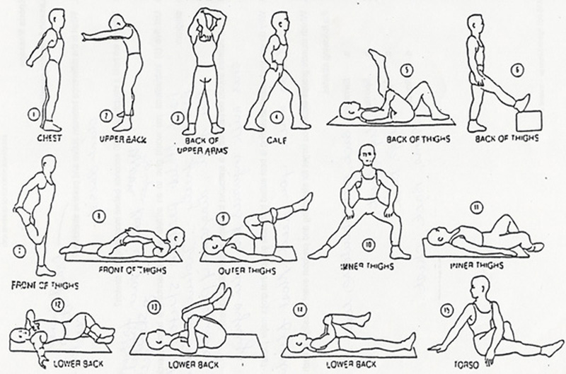 Stretches Cool Down Exercises