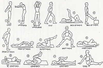 easy stretches,back pain stretches,safe stretch,stretch