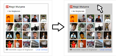 Cara Membuat Widget Google+ Follower dengan Efek Keren