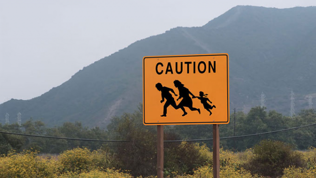 illegal immigration in arizona essay