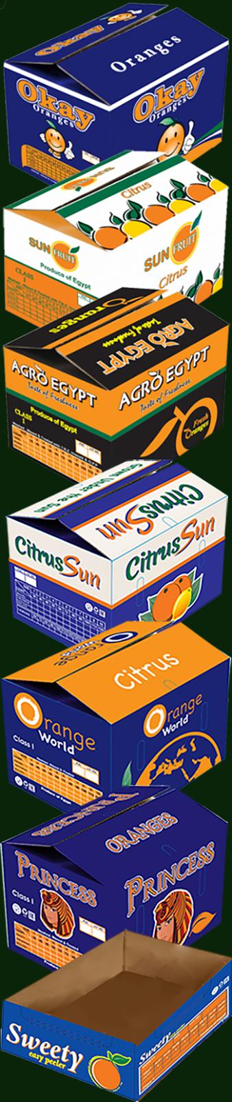 Упаковка апельсина AgroEgypt