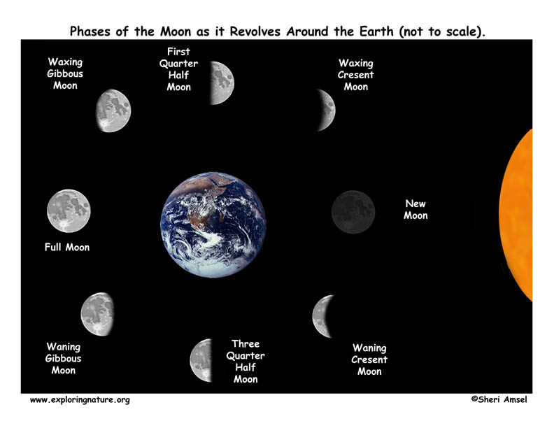 Q5: Are the phases of the Moon the same all over the world at the same ...
