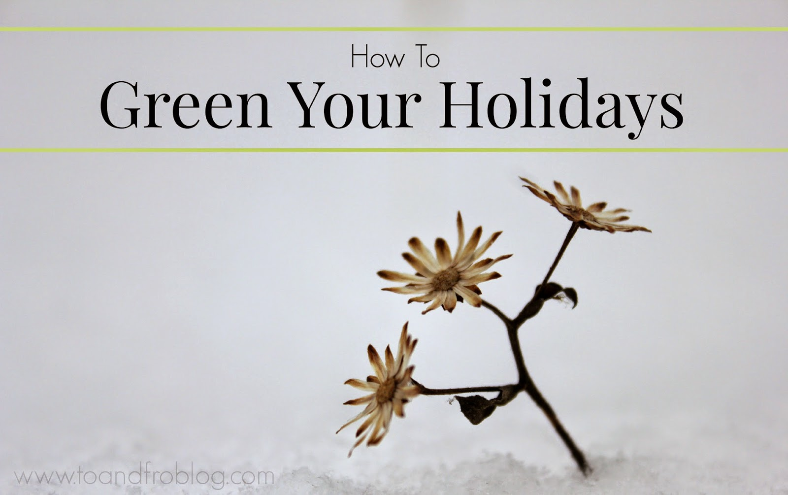 15 ways to green your holidays