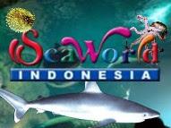 isamas54: Wisata Jakarta (2) : Sea World Indonesia, Taman Biota Laut ...