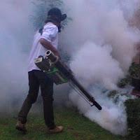 Jasa Pengendalian Nyamuk